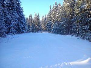Windpark bedroht Skigebiet Hoher Brand